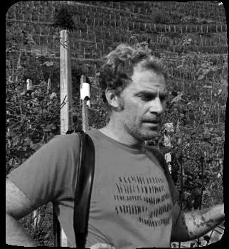 Azienda agricola Marco Ferrari